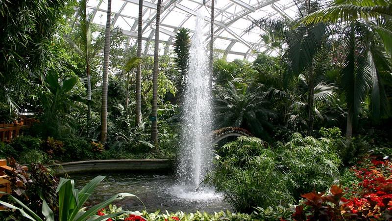 Ботанический сад в Пекине
