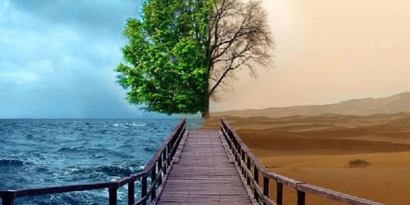 Влияние климата на мировой туризм