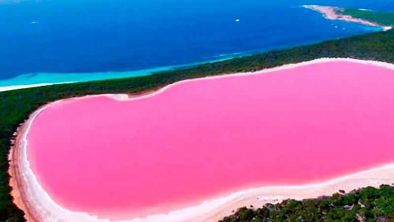Розовое озеро (Австралия)