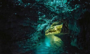 «Пещеры Вайтомо» или «Пещера Светлячков (Glowworm)» | Новая Зеландия