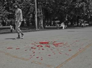 """Сараевская """"роза"""". Босния"""