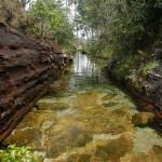 Река пяти цветов, Колумбия