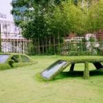 Машины, поглощенные травой на Тайване