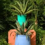Сад Мажорель в Марокко