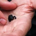 Гора Рорайма. Черные лягушки