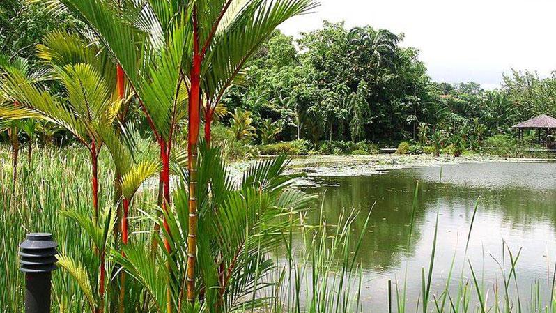Букит Тимат Сингапур