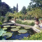 Ботанический сад Падуи, Италия.